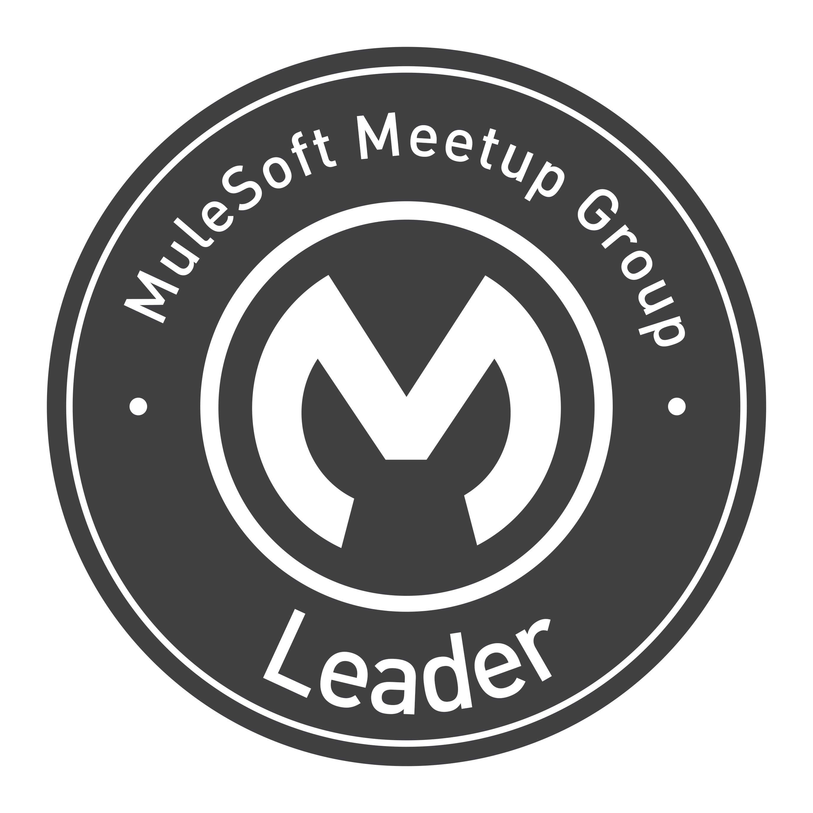 MuleSoft Meetup Group Leader