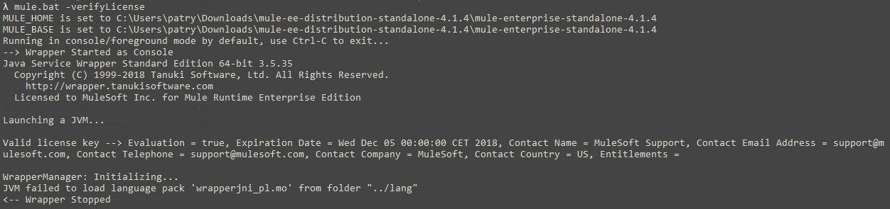 Runtime verification output for enterprise runtime